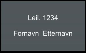 """Bildet viser """"Leil. 1234"""", tom linje og """"Fornavn Etternavn"""""""